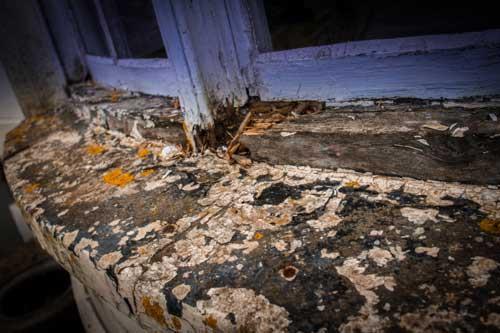 Window Restoration Bristol